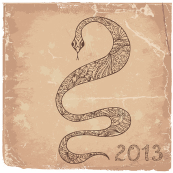 Grunge background with a snake symbol 2013